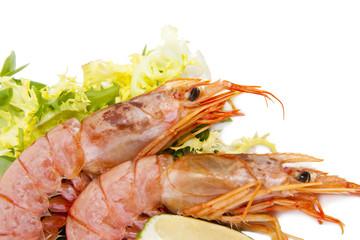 pescado y marisco fresco aislado