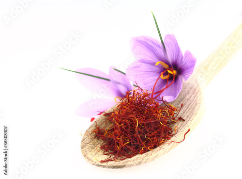 Fotobehang Krokus Dried saffron spice and Saffron flowers