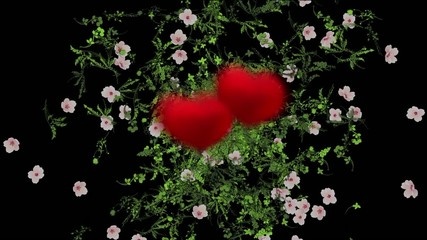 Love background two hearts