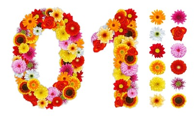 Numbers 0 and 1 made of various flowers