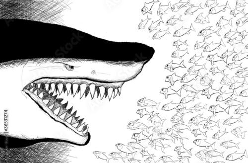 Naklejka Rekin w obliczu małe ryby
