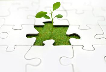 Plant jigsaw