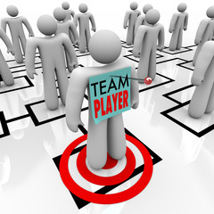 Team Player Targeted in Organizational Org Chart Teamwork