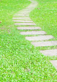 Stone walk way on green grass in the garden.