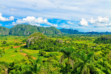 The Vinales valley in Cuba, a famous tourist destination