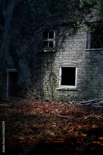 old derelict cottage