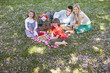 Family picnicking in park