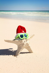 Starfish with glasses and hat