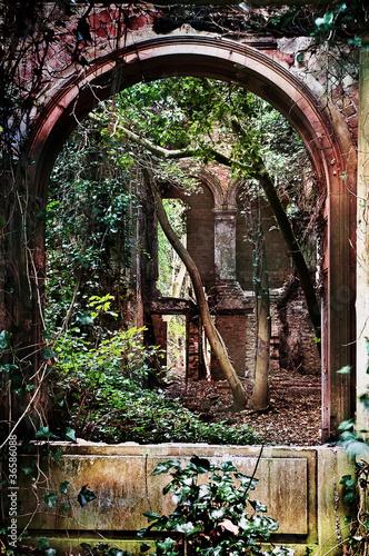 old abbey ruin