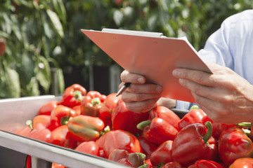 Technician with clipboard examining produce