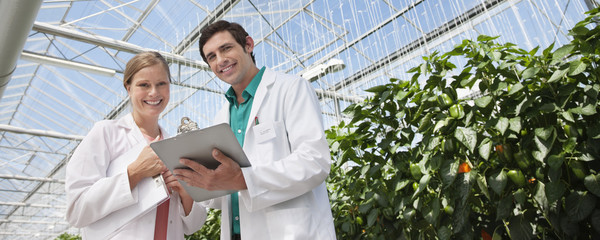 Scientist examining clipboard in greenhouse