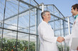 Scientists shaking hands outside greenhouse