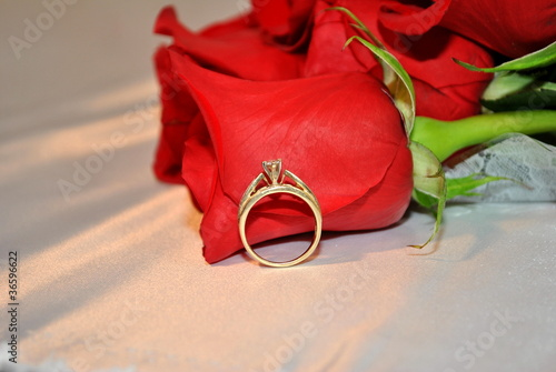 Ring and Rose