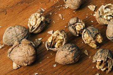 Fresh walnuts open