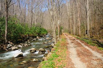 trail along a river