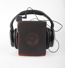 Speaker and headphone