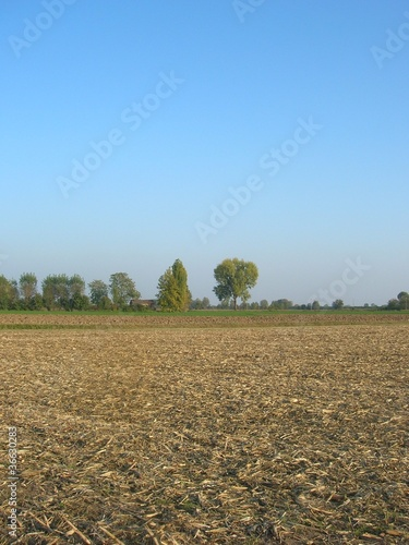 autunno in campagna