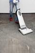 cleans the carpet