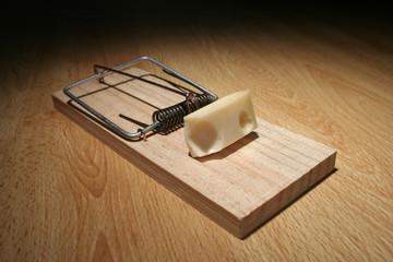ratonera + queso