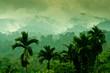 Selva de Sumatra