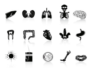 black human anatomy icon