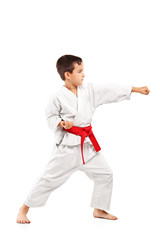 Full length portrait of a karate child posing