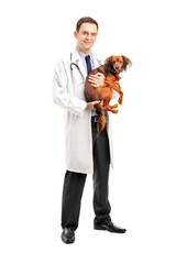 Full length portrait of a smiling veterinarian holding a puppy