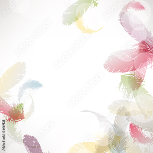 colorful feather background