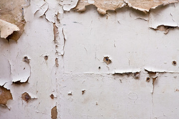 Paint peeling off plaster wall in a derelict building