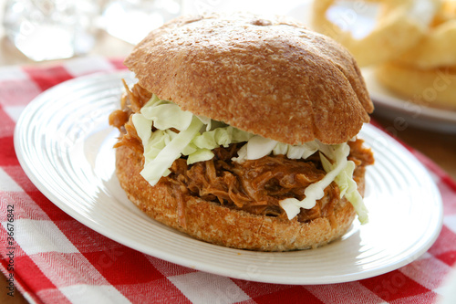 Pulled Pork Sadwich