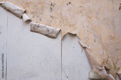 Wall-paper peeling off plaster wall in a derelict building