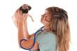 vétérinaire qui osculte un chiot