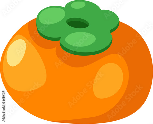 illustration Persimmon vector file on White background