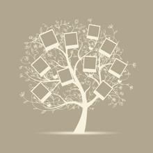 Drzewo genealogiczne projektu, wstawić swoje zdjęcia w ramkach