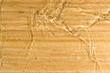 Texture wood