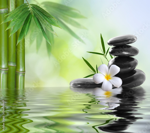 spa stones with frangipani - 36696469