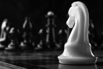white knight chess piece