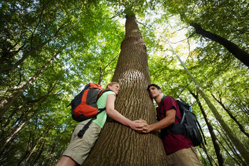 environmental conservation: young hikers embracing large tree