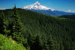 Mount-Hood-from-Anthill-Trail