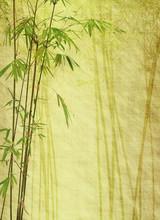 bambou sur la texture grunge vieux papier antique.