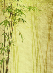 bamboo on old grunge antique paper texture . © xiaoliangge