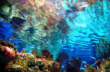 the-world-underwater