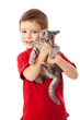 Little boy with gray kitty in hands