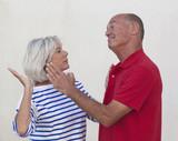 violence domestique chez les seniors poster