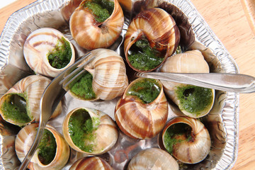 snails as nice french gourmet food background