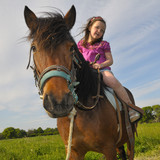 Fototapety girl and pony