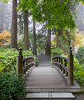 Foggy Morning at Wooden Foot Bridge at Japanese Garden - 36752029