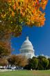 US Capitol in autumn, Washington DC USA