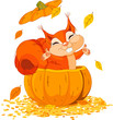 Squirrel in pumpkin