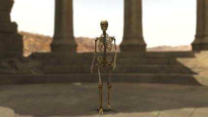 遺跡と骸骨